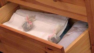Чем отмыть в шкафу запах затхлости